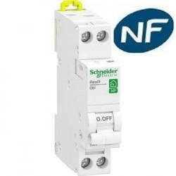 Disjoncteur 1p + n 2A - courbe C - peignable Schneider  R9PFC602