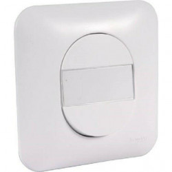Prise double chargeur USB avec plaque Schneider Ovalis blanc S260407