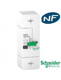 Schneider - Resi9 DB60 -...